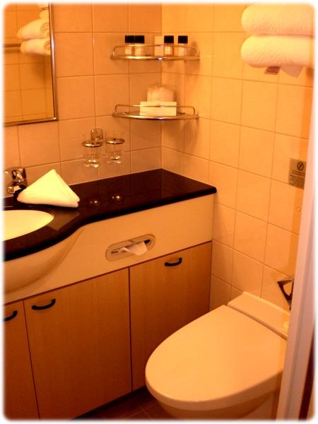 qm2-stateroom-bathroom3l.jpg