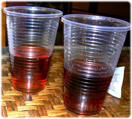 Bulgarsk godnat-brandy...