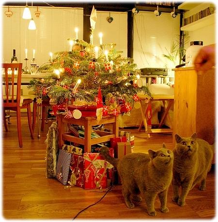 Juleaften hos yngste tvangsarving